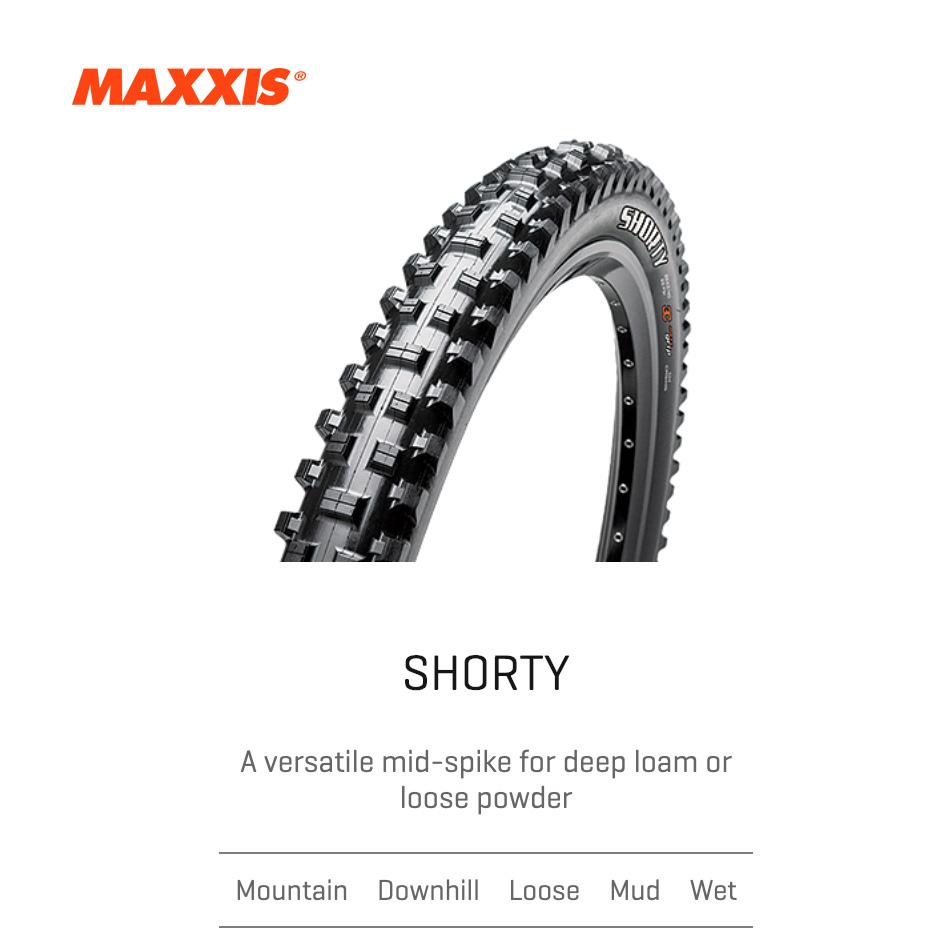 MAXXIS | SHORTY